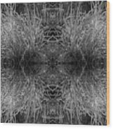 Frozen Grass Abstract In Bw Wood Print