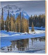 Frozen Jasper Paradise Wood Print