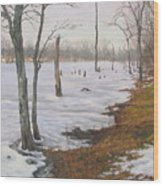 Frozen Lake Wood Print