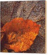 Frozen Leaf Wood Print