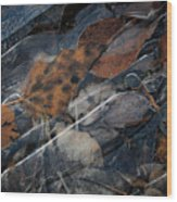 Frozen Leaves In Fall Wood Print