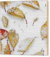 Frozen Leaves Wood Print