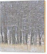 Frozen Limbs Wood Print