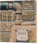 Frozen Meter Wood Print