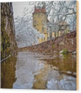Frozen Moat At Fonthill Wood Print