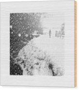 Frozen Moments - Walking Away Wood Print