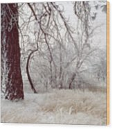Frozen Morning In Palouse Wood Print