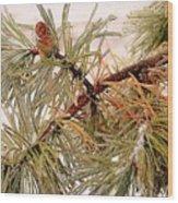 Frozen Pine Wood Print