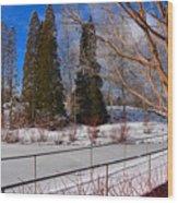 Frozen Pond / Chicago Botanic Garden Wood Print