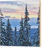 Frozen Reflection 2 Wood Print
