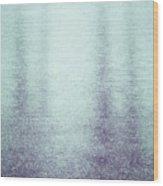 Frozen Reflections Wood Print by Wim Lanclus