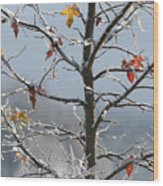 Frozen Remnants Wood Print