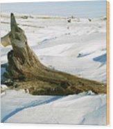 Frozen Shores Wood Print