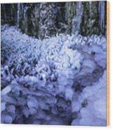 Frozen Stream Wood Print