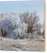 Frozen Trees By The Lake Wood Print
