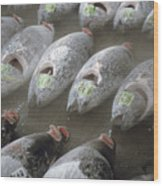 Frozen Tuna Fish At The Tsukiji Wood Print