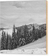 Frozen Valley 4 Bw  Wood Print