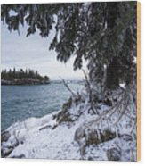 Frozen View Of Ellingson Island Wood Print