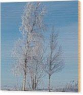 Frozen Views 1 Wood Print