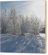 Frozen Views 3 Wood Print