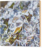 Frozen Water Droplets Wood Print