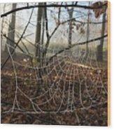 Frozen Web Wood Print