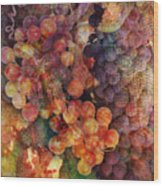 Fruit Of The Vine Wood Print by Barbara Berney