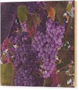 Fruit Of The Vine Wood Print