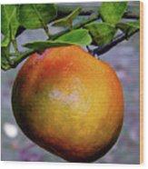 Fruit On The Tree Wood Print