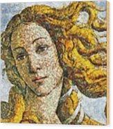 Fruity Venus I Am So Sorry Mr Boticelli Wood Print