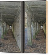 Ft. Howard Pk- Tunnel Effect - 3d Stereo X-view Wood Print
