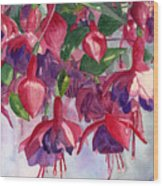 Fuchsia Frenzy Wood Print