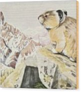 Fuertes, Louis Agassiz 1874-1927 - Burgess Animal Book For Children 1920 Pika Wood Print