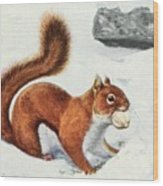 Fuertes, Louis Agassiz 1874-1927 - Burgess Animal Book For Children 1920 Red Squirrel Wood Print