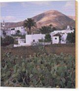 Fuerteventura Iv Wood Print