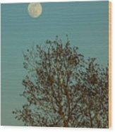 Full Moon At Sunset Wood Print