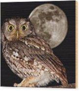 Full Moon Wood Print