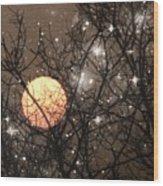 Full Moon Starry Night Wood Print
