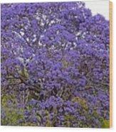 Full On Purple Wood Print