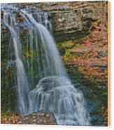 Fulmer Falls - Childs State Park Wood Print