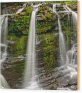 Fulmer Falls Wood Print