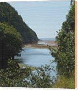 Fundy Beach Wood Print
