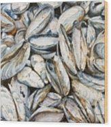 Fundy Blues Wood Print