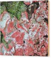 Fungus Amongst Us - Florida Palm Wood Print