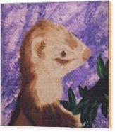 Funny Ferret Wood Print