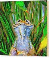 Funny Frog Wood Print