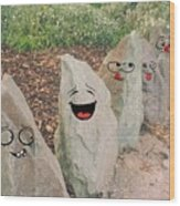 Funny Rocks Wood Print
