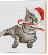 Funny Santa Cat With Candy Cane Wood Print