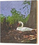 Furman University Swan Wood Print