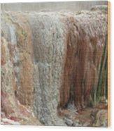 Furnas Hot Springs Wood Print